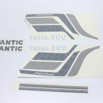 Adhesivos FANTIC 300 original Completo